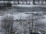 discs-of-ice-forming-on-the-audnedsdal-river
