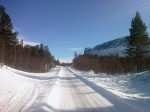 Day 86. The road through the pines from Vietas to Satihaure lake