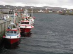 Day 150. The three boats which operate out of Gamvik harbour is a fraction of the operation at Mehamn or Berlevag