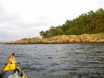 Day 239.5 Approaching Arendal the weather improved and brightened up the pine forests on Hesnesoy