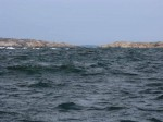 Day 246.3 Paddling across the narrow Mefjord to Tonsbergtonne in the stong headwind