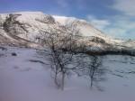 Day 86. Kouperatjokka mountain rises above the birch forest