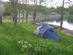 Day 176.2 A camp in the grassy forest at Kloven bay on Senja island